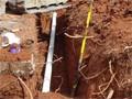 rootcutting