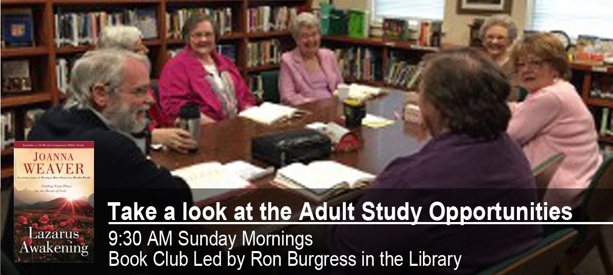 Adult Study Opportunities