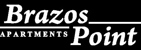 Brazos Point Logo Website