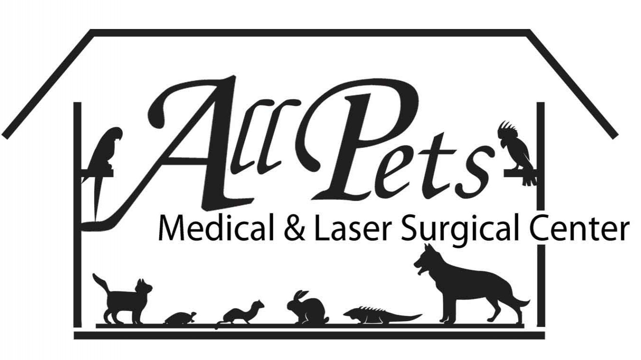 Reptiles And Amphibians Wellness And Care All Pets Veterinary